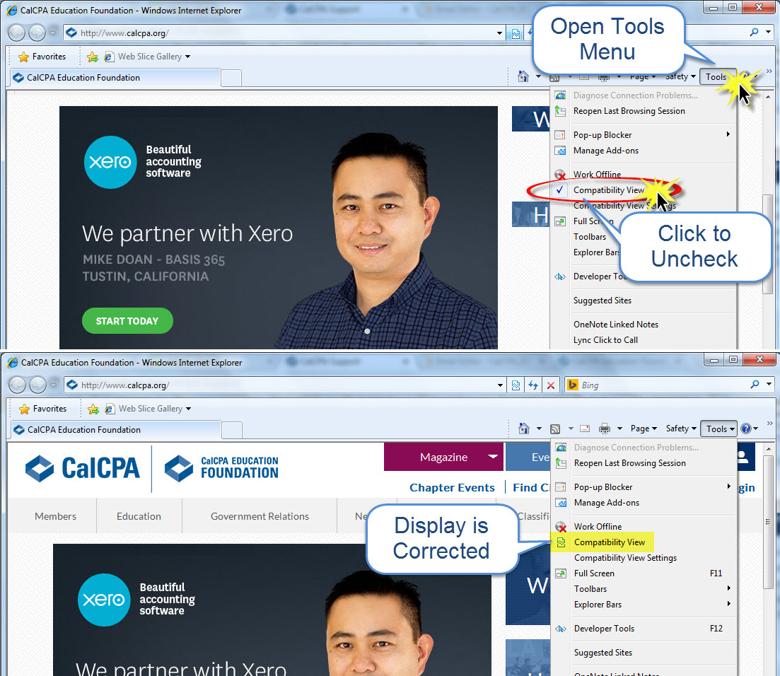 Correct Display in Internet Explorer